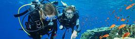 tour lặn biển Phú Quốc